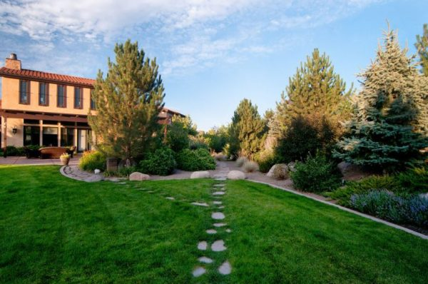 residential & commercial landscaping