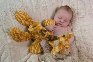 ISO 1250, F4.5, 1/200 sec - her toy giraffe