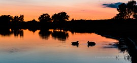 HatchetPond at sunset