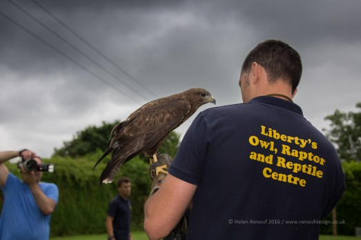 Liberty's Owl, Raptor and Reptile Centre in the New Forest - Photographers Session
