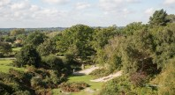 View over the New Forest