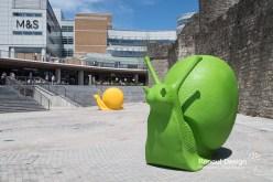 Snails invade Southampton