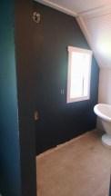 dark paint bathroom