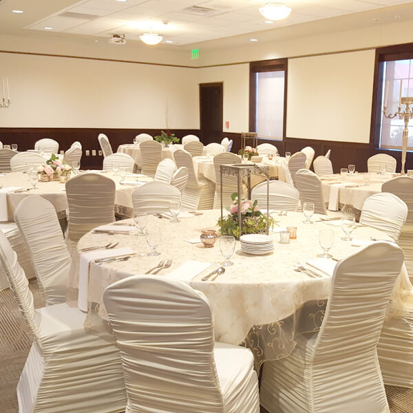 Ivory Chair Covers  RentAll Inc