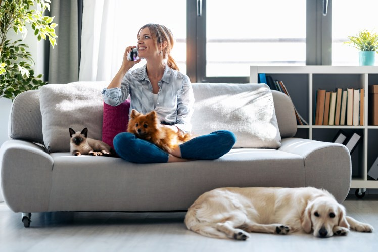 Woman in her apartment/home with her pets