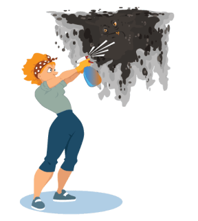 Fight Mold & Mildew in Your Home