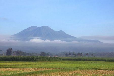 Wisata Religi Gunung Kawi Sunday Motorent