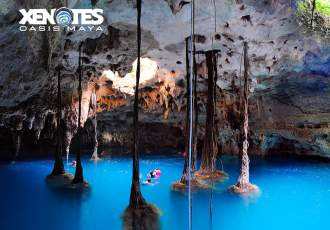 Xenotes tours Featured IMG