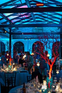 under the sea | Prom Themes