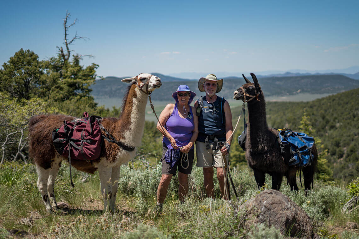 Plan your next backcountry llama adventure here