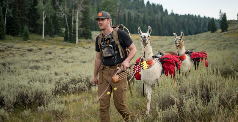 Why Hunt With Pack Llamas?