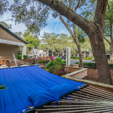 amberly place at tampa palms apartments