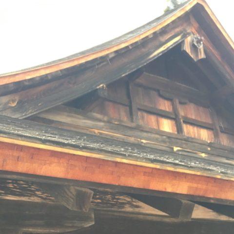 厳島の檜皮葺の屋根