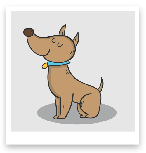 Forografía perro