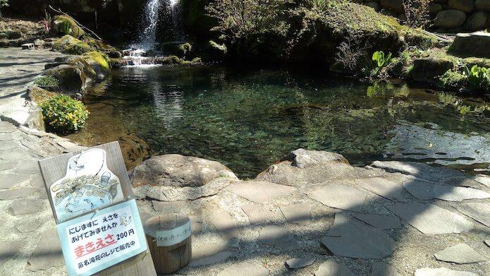 苗名滝苑の池
