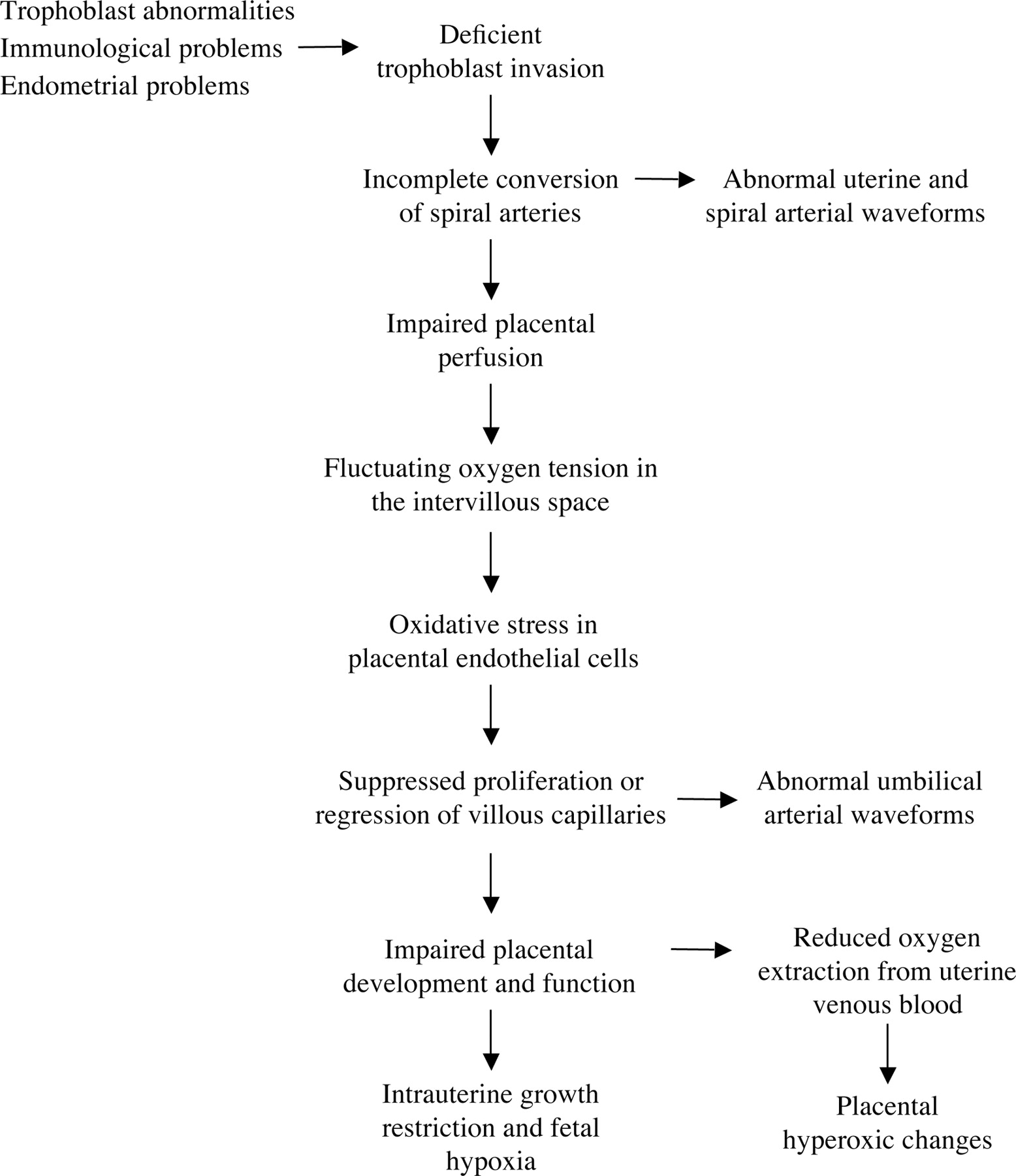 hight resolution of flow diagram indicating how oxidative stress induced through deficient conversion of the spiral arteries may lead through impaired placental angiogenesis to