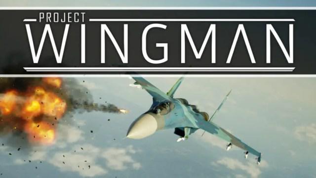 Project Wingman Repack-Games