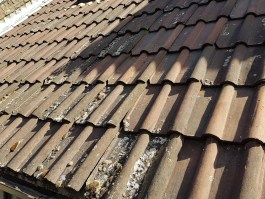 terracotta roof tile replacement rope access
