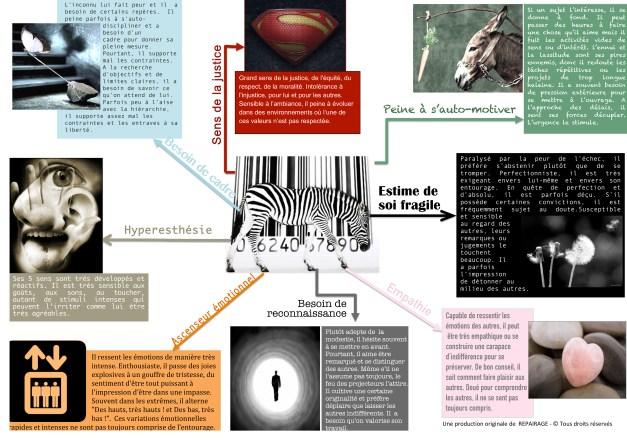 Microsoft Word - Infographie grand zèbre.docx