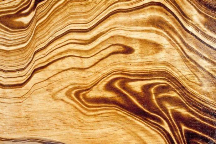 What is Mango Wood ? 3 Things that make it special