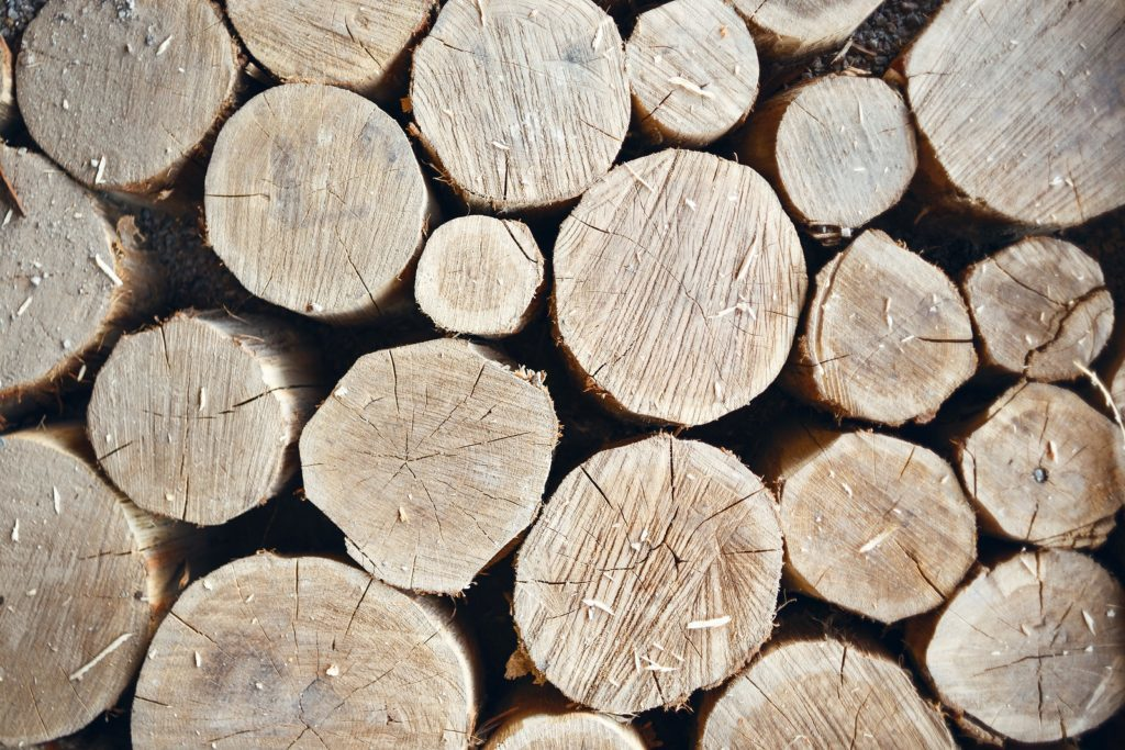 Best Wood For Outdoor Projects