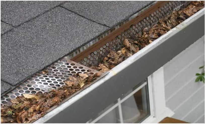 Clean the Gutters