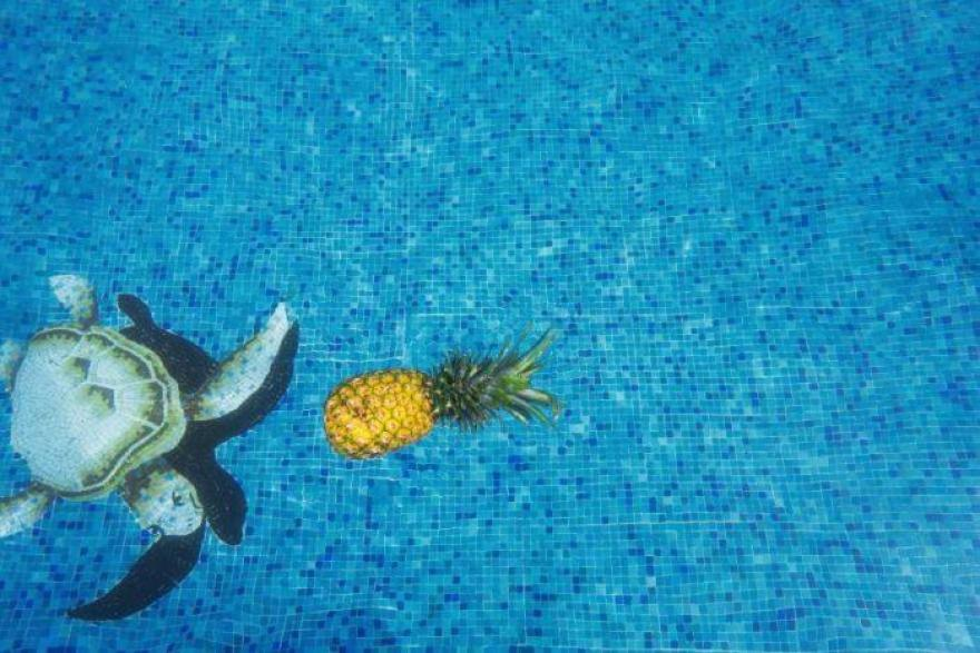 Pool Remodel Ideas