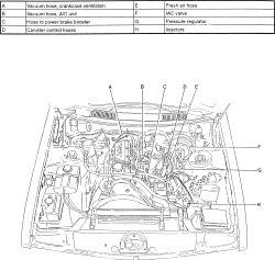 Vacuum Diagram 1999 Volvo C70, Vacuum, Free Engine Image