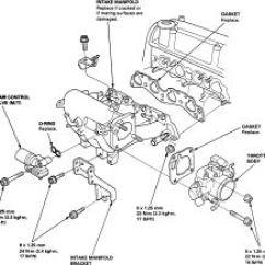 1997 Honda Accord Timing Belt Diagram Labelled Of A Tilapia Fish | Repair Guides Engine Mechanical Intake Manifold Autozone.com