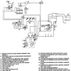 2000 Honda Civic Vacuum Diagram Labeled Of A Chicken Repair Guides Diagrams Autozone Com Click Image To See An Enlarged View