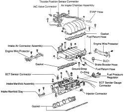 Toyota 4runner Intake Manifold Diagram, Toyota, Free