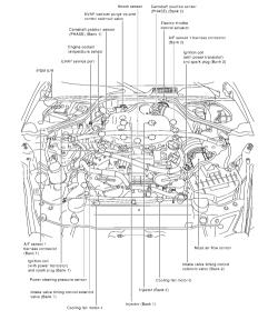 ☑ Vq35de Coil Pack Wiring Diagram