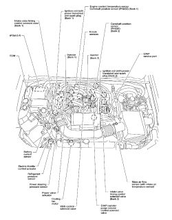 2000 Pathfinder Firing Order Diagram 2000 Pathfinder Fuse