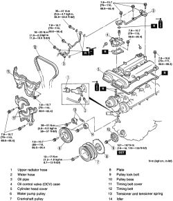Jeep 3 8l Engine Belt, Jeep, Free Engine Image For User