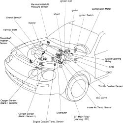 Toyota 5s Engine Diagram Altezza Engine Diagram Wiring