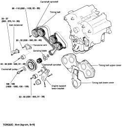 kia sedona 2003 Timing belt installation procedure ~Owner Pdf Manual