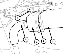 Ford F150 Evap Canister Location