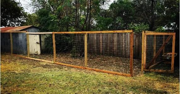 Chicken Coop Gate