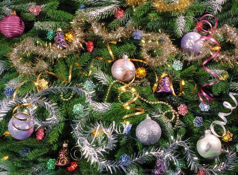 Weihnachtsbaum für das neue Jahr