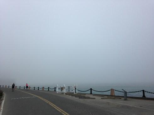 Insert Golden Gate Bridge here...
