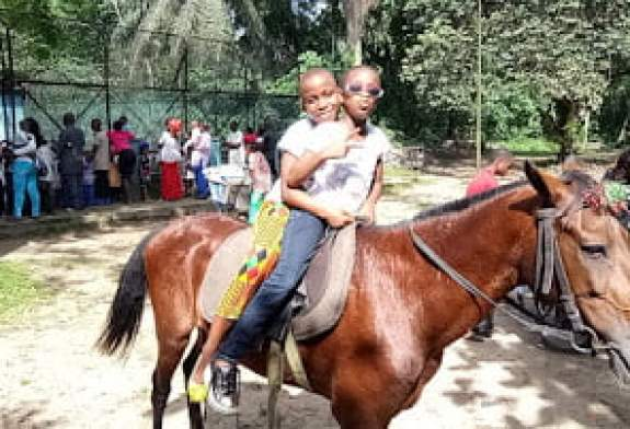 horse ride in the zoo. parks to visit in rivers state port harcourt
