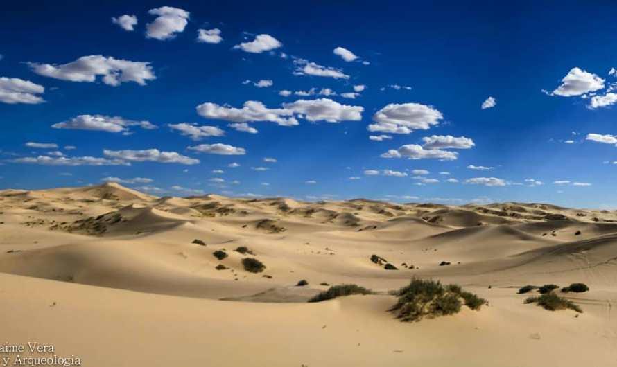 Dunas de Samalayuca, el desierto que debes conocer