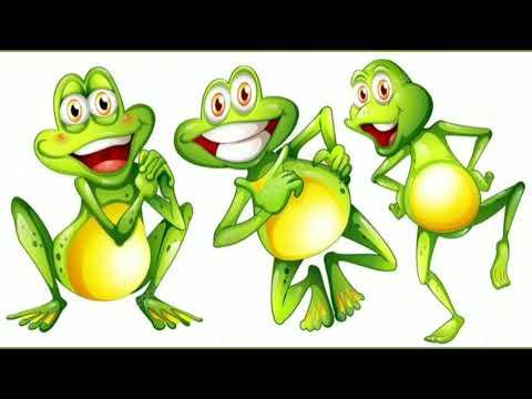 El foso de las ranas, el poder de la opinión ajena