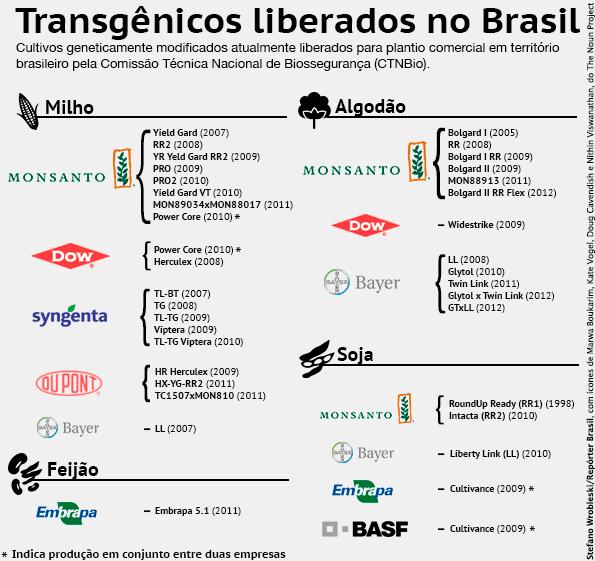Infográfico: Transgênicos liberados no Brasil
