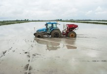 NOVARA, ITALY - May 2: A tractor sows rice in a flooded paddy field on May 2, 2013 in Novara, Italy. With a production of over 40 million tons, Italy is the largest producer of rice in Europe. The cultivation is mainly concentrated in Piemonte and Lombardia, with a unique production of 150 different varieties of rice. In Italy the culture period runs from the end of March until the end of October. (Photo by Giorgio Cosulich/Getty Images)