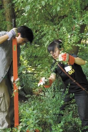 brookhaven park cleanup - 0810