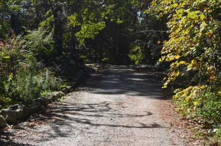 Lee Circle is perhaps the last remaining gravel road in Buckhead.