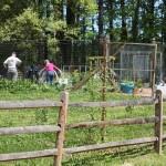 Working in the community gardens of Dunwoody's Brook Run Park.