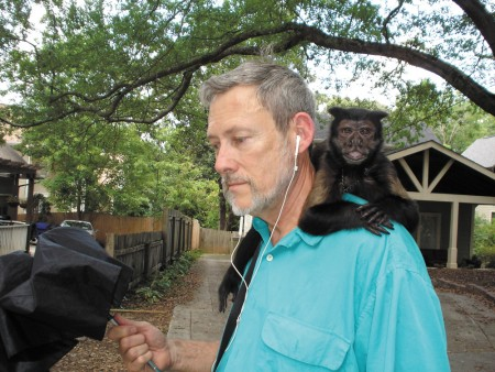 Ed Walker takes his daily stroll through the Drew Valley neighborhood with his pet monkey, Zorro. Zorro, a black-horned Capuchin, is 34 years old.