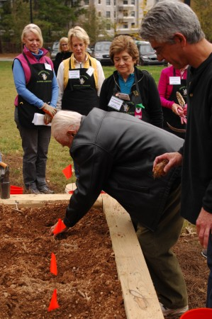 Dr. John Galambos (center), husband of Sandy Springs' first mayor, the late Eva Galambos, and their son Michael (right) plant the first bulb at the Daffodil Project Children's Memorial Garden at Hammond Park Nov. 15. (Photo by Phil Mosier)